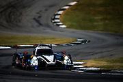 September 29, 2016: IMSA Petit Le Mans, #60 John Pew, Oswaldo Negri Jr., Michael Shank Racing, Prototype