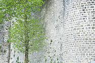 Old town walls (Le Remparts), Boulogne-sur-Mer, Pas-de-Calais, France © Rudolf Abraham