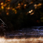 Fly-fishing near Brevard, NC