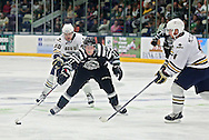 Roughriders' Alec Marsh (21) tries to split Stampede's Michael Buonincontri (20) and Ed McGovern (4) during their game at the Cedar Rapids Ice Arena in Cedar Rapids on Saturday, September 28, 2013.
