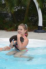 3-12-17 1:00 swim