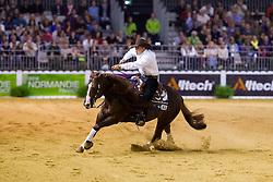 Andrea Fappani, (USA), Custom Cash Advance - Individual Final Comptetition - Alltech FEI World Equestrian Games™ 2014 - Normandy, France.<br /> © Hippo Foto Team - Leanjo De Koster<br /> 30-08-14