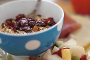 A bowl of granola with dried cherries and fruit salad.