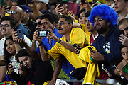 Brazil fans react during an international friendly soccer match against Peru, Tuesday, Sept. 10, 2019, in Los Angeles. Peru defeated Brazil 1-0.