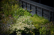 The High Line is a public park built on a 1.45-mile-long elevated rail structure running from Gansevoort Street to 34th Street on Manhattan's West Side. The High Line was a freight rail line, in operation from 1934 to 1980.