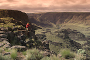 Owyhee,  Canyonlands.  Hiker sits at the Owyhee,  Canyon overlook and takes in the view. MR