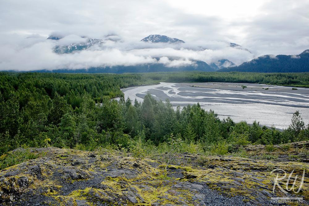 Resurrection River Scenic Vista From Exit Glacier Trail, Kenai Fjords National Park, Alaska