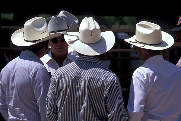 group of men in cowboy hats standing outside talking