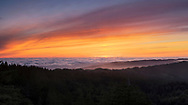 Foggy Sunset Panoramic, Mount Tamalpais State Park, California