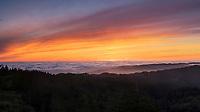 Foggy Sunset Panoramic, Mount Tamalpais State Park, California