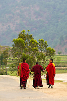 Buddhist monks walking along a road, Punakha, Bhutan