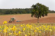 Felder und Traktor bei Waldbrunn im südlichen Odenwald, Naturpark Bergstraße-Odenwald, Baden-Württemberg, Deutschland | trecker on field, southern Odenwald, Baden-Wuerttemberg, Germany