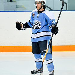 NEWMARKET, ON - Feb 13 : Ontario Junior Hockey League Game Action between Newmarket Hurricanes Hockey Club and Burlington Cougars Hockey Club.  Paolo DeSousa #24 of the Burlington Cougars Hockey Club celebrates his goal.<br /> (Photo by Phillip Sutherland / OJHL Images)