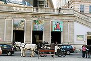 Horse buggy Vienna, Austria