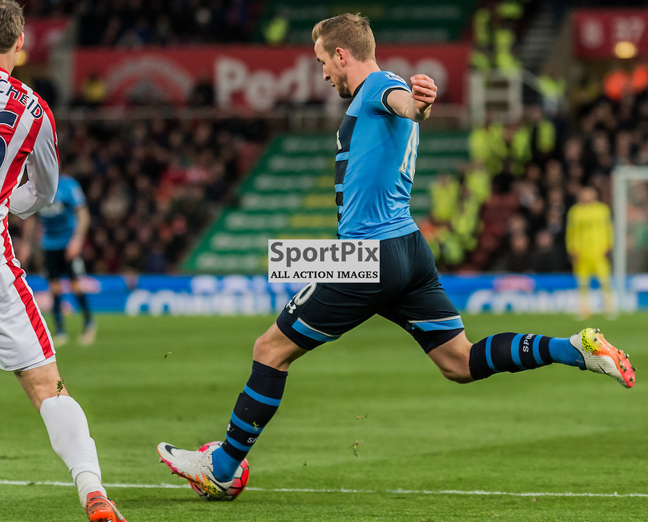 Tottenham Hotspur forward Harry Kane (10) scores the opening goal in the Premier League match between Stoke City and Tottenham Hotspur <br /> <br /> (c) John Baguley | SportPix.org.uk