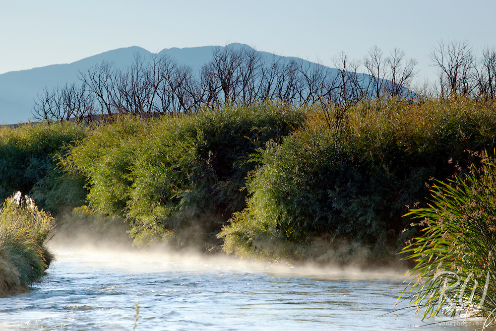 Morning Fog Rising from Owens River, Owens Valley near Bishop, California
