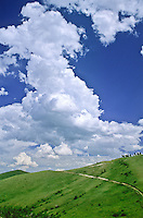Developing cumulus congestus clouds over the Bighorn Mountains, Wyoming.