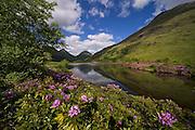 Peaceful Spring scene in Glen Etive, amidst the Glencoe hills, Argyll