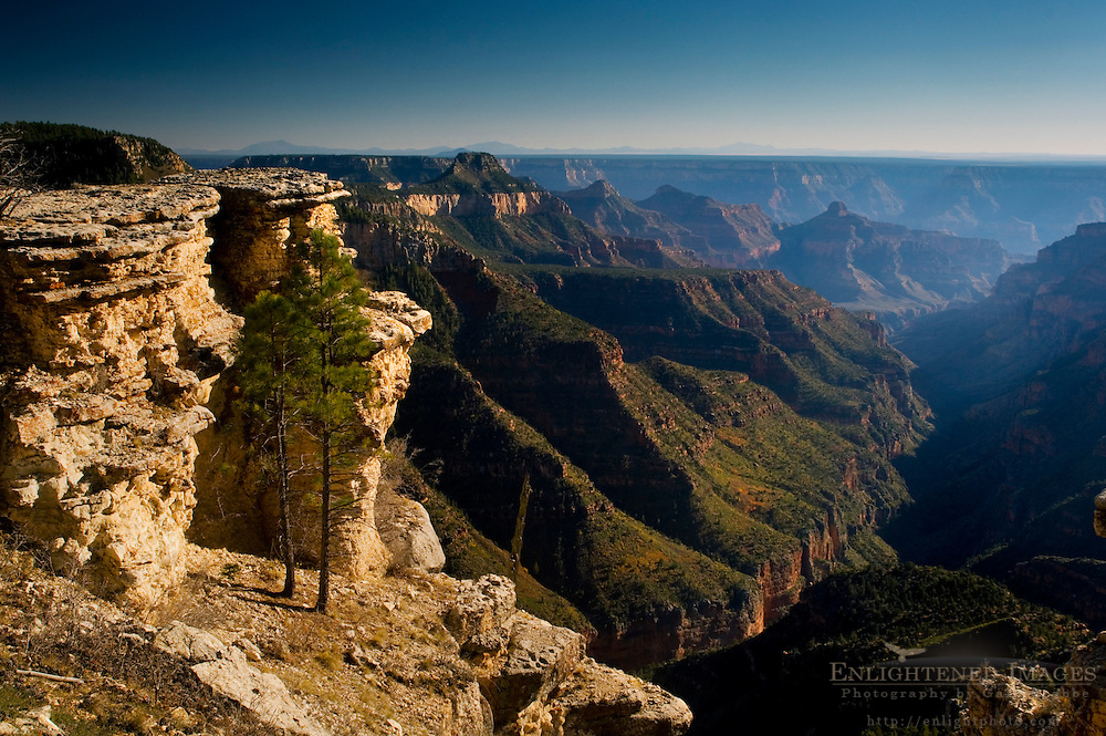 Eroded rock formations along edge of the canyon near The Dragon, North Rim, Grand Canyon National Park, Arizona