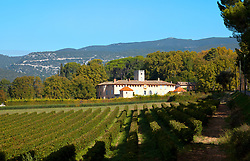 Scenery includes vineyards and picturesque buildings en route to Lourmarin, a scenic village in the Vaucluse department, Luberon region, Provence, Southern France.