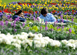 © Licensed to London News Pictures. 24/03/2012. London, UK. A couple sit amongst a colourful flower display. People enjoy the warm sunshine today 24 March 2012 in Hyde Park Central London . Photo credit : Stephen SImpson/LNP