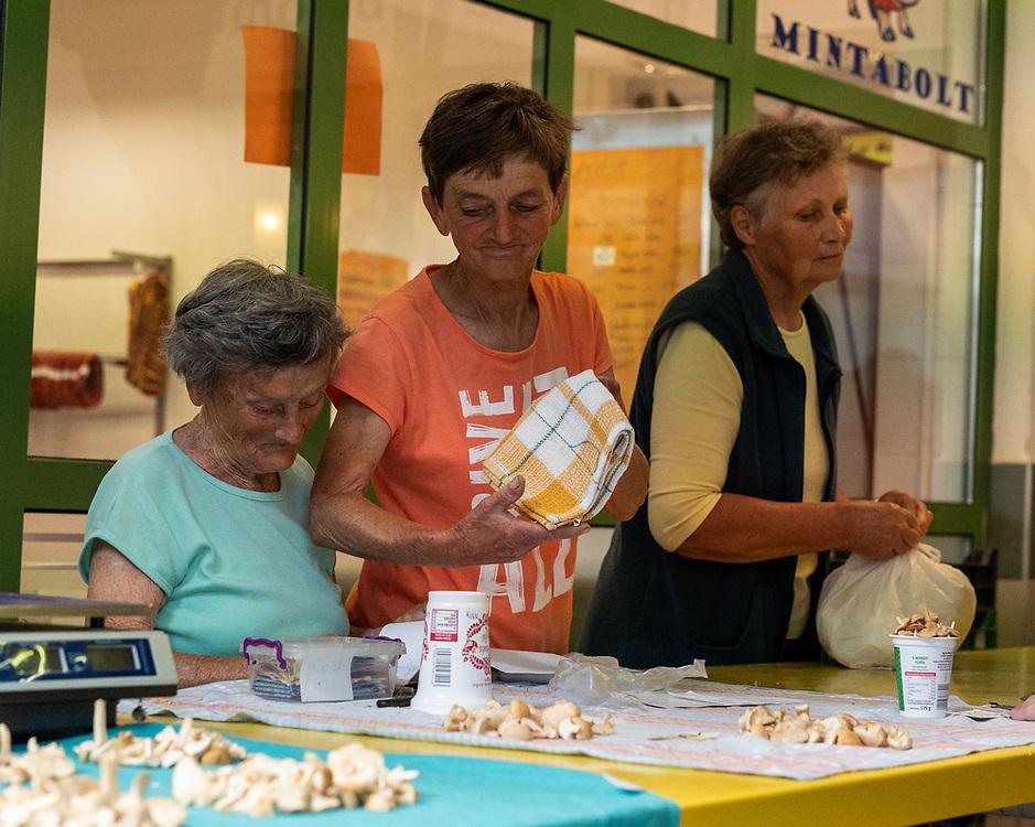 Veszprem covered market