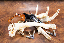 38 caliber pistol displayed on a leather background with deer antlers, bones and cartridges.