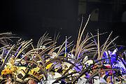 Nederland, Nijmegen, 6-2-2011Prinsentreffen in de Massinkhal.75 Carnavalsprinsen en hun hofdames staan op het podium. De veren op hun steken komen van fazanten. Het carnaval is weer begonnen.Foto: Flip Franssen/Hollandse Hoogte