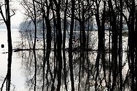 Gelderse IJssel overstroomd bij Rhederlaag. Rhederlaag is een recreatiegebied in de gemeente Zevenaar. Circa 300 hectare uitgegraven wateroppervlakte grenzend aan de Gelderse IJssel.