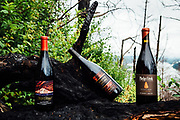 Oregon Wine Press- Smokey Pinot Trail