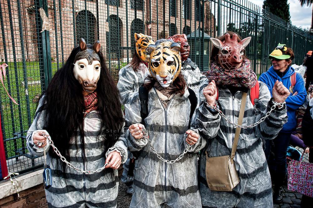 Roma 1 Dicembre 2012.Manifestazione  dal Coordinamento antispecista e da Animal Amnesty per un circo senza animali..