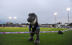 Sussex Mascot Sid the Shark.  - Mandatory by-line: Alex Davidson/JMP - 01/06/2016 - CRICKET - The 1st Central County Ground - Hove, United Kingdom - Sussex v Somerset - NatWest T20 Blast