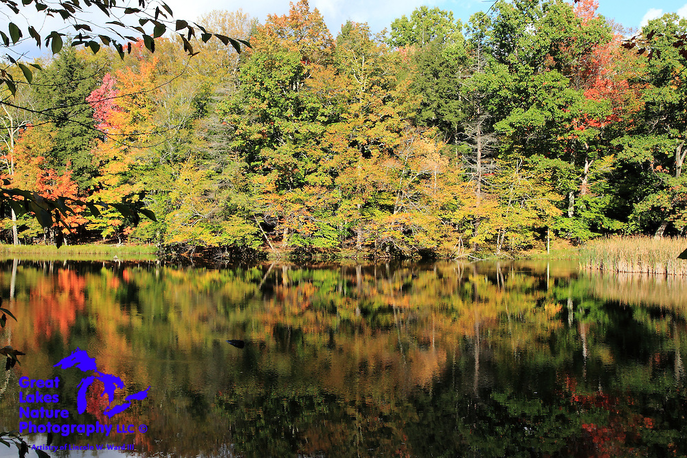 A breathtaking view of the autumn colors reflecting on a Manistee River backwater bayou just upstream from Red Bridge, near Brethren, Michigan.