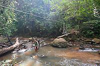 A woman walking through a river in a rainforest, Taman Negara National Park, Malaysia.