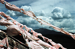 "China, Anye Machen, 2007. Prayer flags at a Qinghai ""mani ka,"" or prayer hill. Inscribed with verse, and tied to the highest places men can reach, prayers are released to heaven each time the wind blows.."