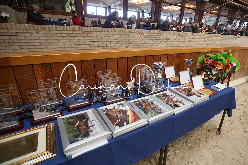 Prizes<br /> BWP Hengstenkeuring 2014<br /> Zilveren Spoor Moorsele 2014<br /> &copy; Dirk Caremans