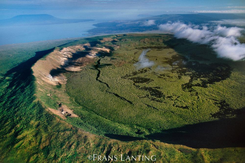Caldera (aerial), Isabela Island, Galapagos Islands