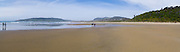 Walking on Waipati Beach, near Cathedral Caves, The Catlins, Clutha, New Zealand.