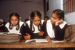 School girls sitting at desk reading books in senior secondary modern school; Punjabi University; Patiala; Punjab; India,