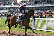 Second placed Us and Them ridden by J.J. Slevin  goes down to the start for the 3.00pm The Doom Bar Maghull Novices' Steeple Chase (Grade 1) 2m during the Grand National Meeting at Aintree, Liverpool, United Kingdom on 6 April 2019.