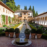 Patio de la Acequia. La Alhambra es una ciudad palatina andalusí situada en Granada, España. Formada por un conjunto de palacios, jardines y fortaleza que albergaba una verdadera ciudadela dentro de la propia ciudad de Granada, que servía como alojamiento al monarca y a la corte del Reino nazarí de Granada, Andalucia. España. Court of the Main Canal. Alhambra is a palace and fortress complex located in Granada, Andalusia, Spain. It was originally constructed as a small fortress in 889 and then largely ignored until its ruins were renovated and rebuilt in the mid-11th century by the Moorish emir Mohammed ben Al-Ahmar of the Emirate of Granada, who built its current palace and walls. It was converted into a royal palace in 1333. Granada. Andalusia. Spain