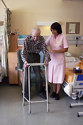 Health care worker assisting elderly patient to mobilise and transfer into chair using Zimmer frame,