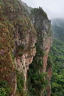 Bewachsene Felswand im Hochland, Chapada dos Guimaraes, Brasilien<br /> <br /> Overgrown rock face in the highlands, Chapada dos Guimaraes, Brazil
