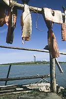 Fishing hanging, with Dew Line in distance, Tuktoyaktuk