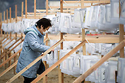 Hitoe Murakami, 60, ties paper lanterns to a wooden frame prior to a ceremony to mark the one year anniversary of the disasters in Ofunato, Iwate Prefecture, Japan on 11 Mar 2012. .Photographer: Robert Gilhooly