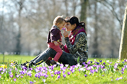 Mother and daughter Albina and Emma (21 months) play amongst the spring flowers in Hyde Park on a warm sunny spring day.<br /> Weather in Hyde Park London. <br /> Wednesday, 5th March 2014. Picture by Ben Stevens / i-Images