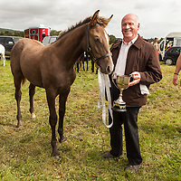 Tom Minogue with his prize winning foal at the foal championship at the Scarriff Agricultural Show 2014