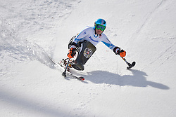 Claudia Loesch, Women's Giant Slalom at the 2014 Sochi Winter Paralympic Games, Russia
