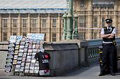 Westminster Terrorism (August 2018)