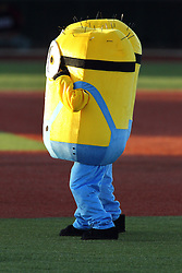 08 July 2016: The Minions during a Frontier League Baseball game between the Florence Freedom and the Normal CornBelters at Corn Crib Stadium on the campus of Heartland Community College in Normal Illinois